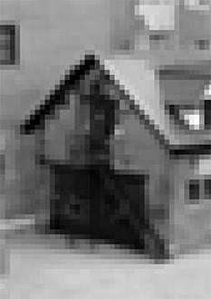 gibca_extended_hasselblad_233x330.jpg